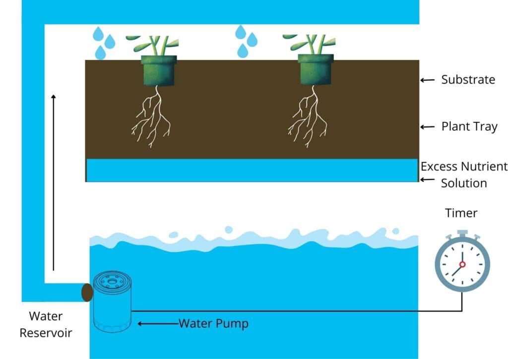 Drip System of Hydroponic Farming