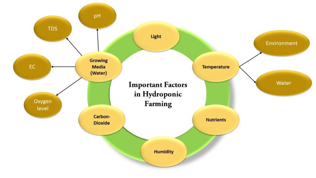 Hydroponic Farming Important Factors